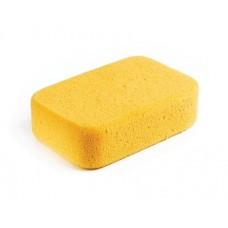 Large Hydrophillic Sponge